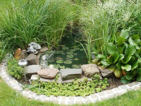 Teichzulauf - Mein schöner Garten Forum
