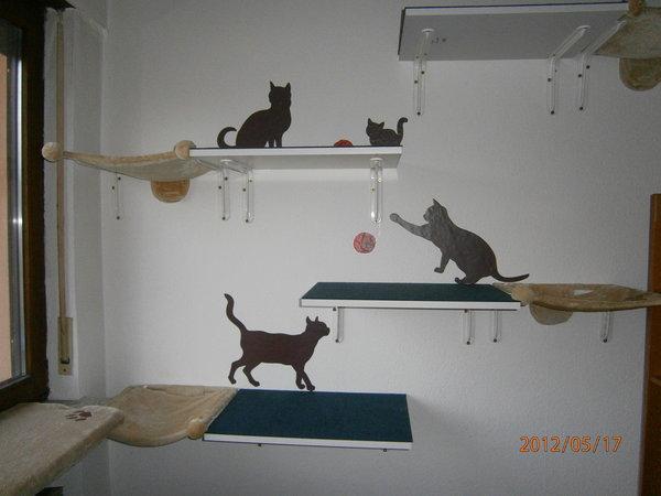 Katzenregale