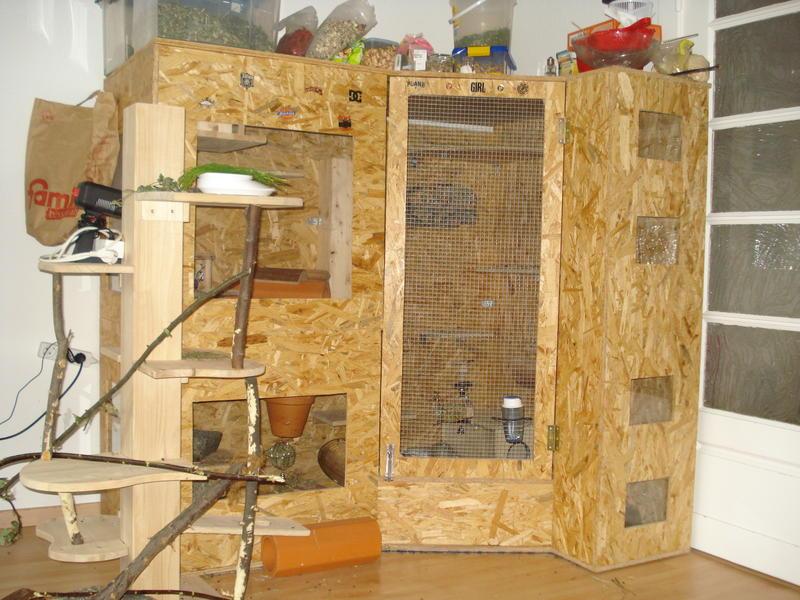 thema anzeigen unser k fig nicht sch n aber selten chinchilla scientia. Black Bedroom Furniture Sets. Home Design Ideas