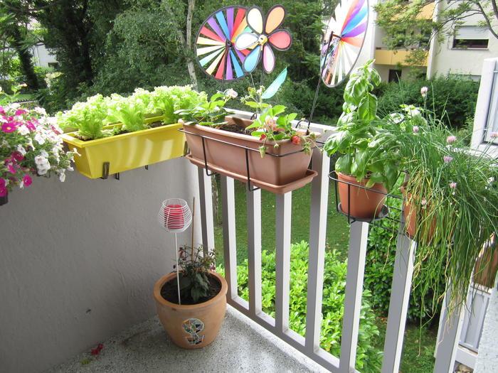 balkon bepflanzung idee. Black Bedroom Furniture Sets. Home Design Ideas