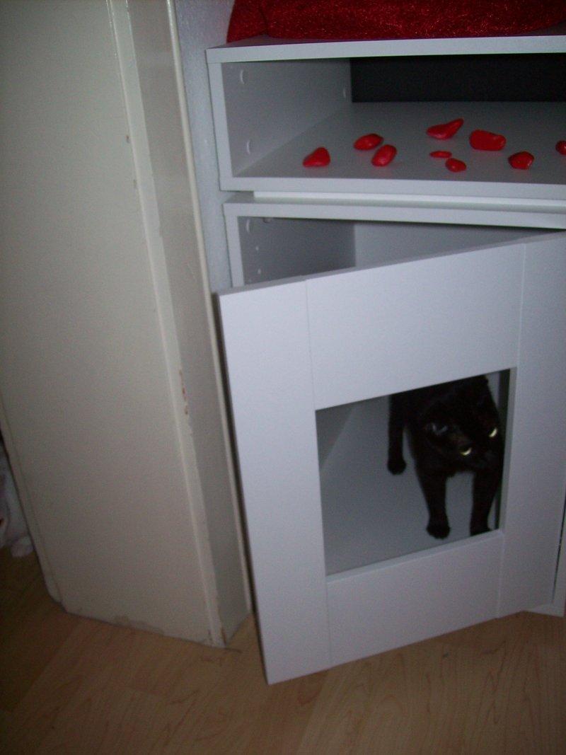 Ziemlich Katzenklo Im Schrank Bilder - Die Schlafzimmerideen ...