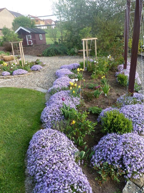 reihenhausgärtchen - seite 1 - gartengestaltung - mein schöner, Garten und Bauen