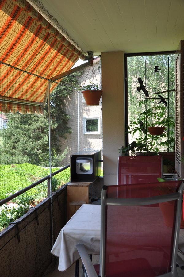 katzennetz welche halterung ist die richtige katzen forum. Black Bedroom Furniture Sets. Home Design Ideas
