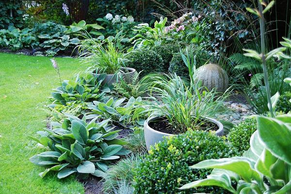 Gartengestaltung Mit Gräsern gartengestaltung mit gräsern turbotech co