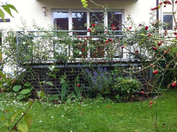 was w rdet ihr in dieses beet pflanzen mein sch ner garten forum. Black Bedroom Furniture Sets. Home Design Ideas