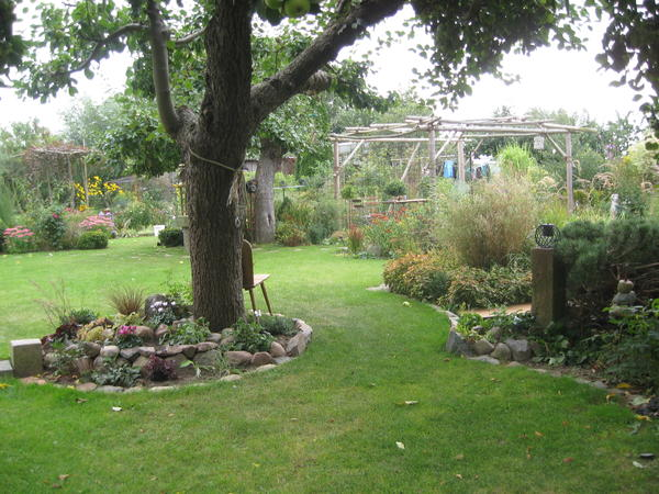 Mein Schöner Garten Forum