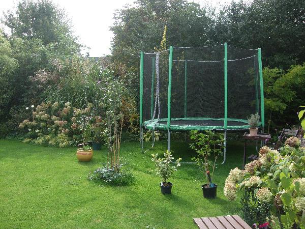 Ich brauche eure meinung hilfe bei einer beetgestaltung for Gartengestaltung trampolin
