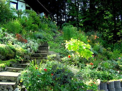 hilfe und rat bei hanggarten benötigt - seite 1 - gartengestaltung, Garten und erstellen