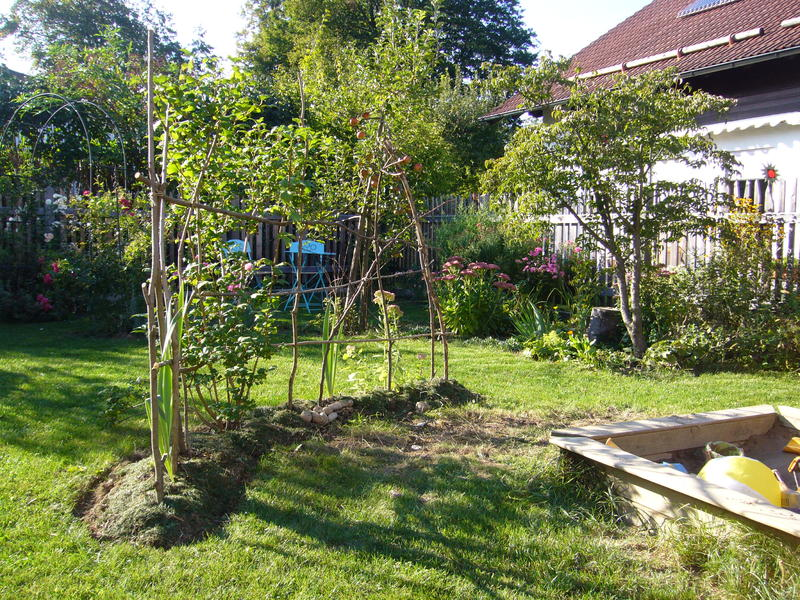 Alternative zu lebendem weidenzaun mein sch ner garten forum for Gartengestaltung quickborn