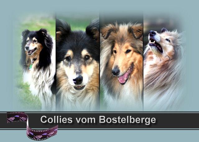 An den Beitrag angehängtes Bild: http://up.picr.de/1238102.jpg