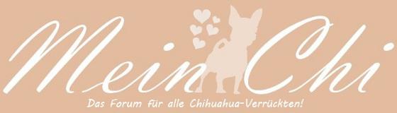 französische bulldogge mops forum - Das kleine Bullyforum - Portal 12594440zn