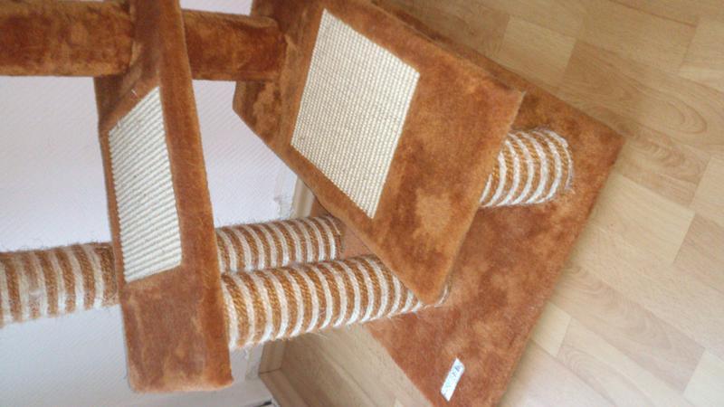 berlin kratzbaum zu verschenken katzen forum. Black Bedroom Furniture Sets. Home Design Ideas