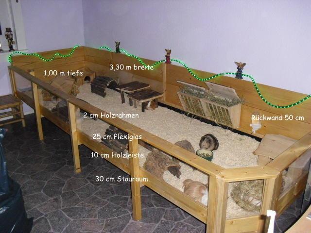 freigehege f r inne meerschweinchen haltung. Black Bedroom Furniture Sets. Home Design Ideas