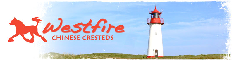 http://www.westfires.com/