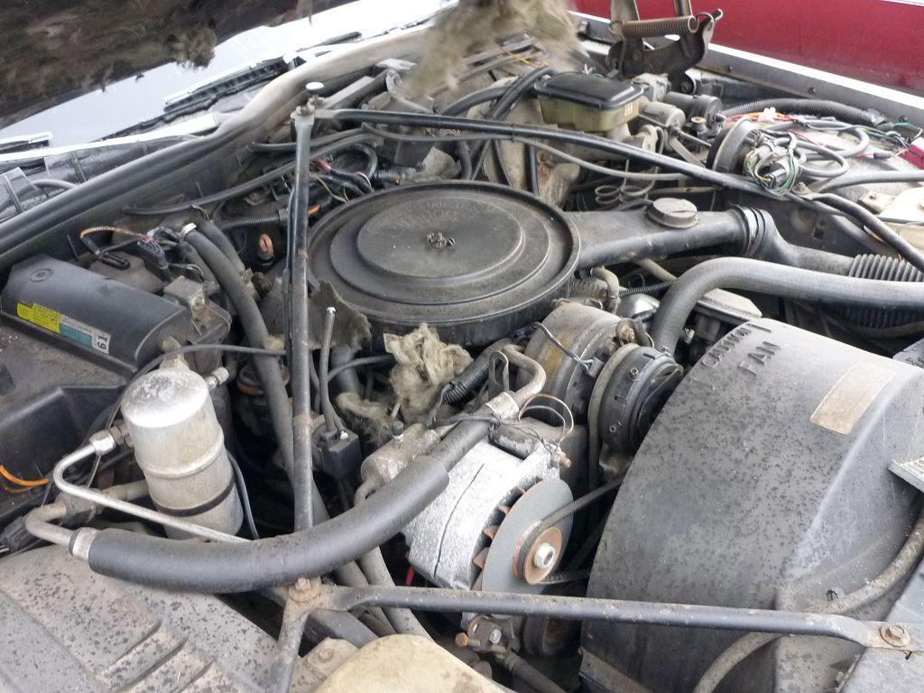1983 Cadillac Fleetwood Brougham d´Elegance - Seite 2 - us-car-forum.net