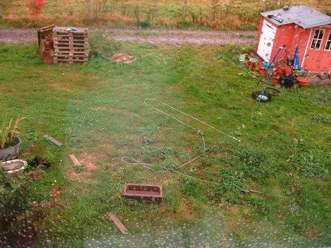 höhe von sträuchern grundstücksgrenze