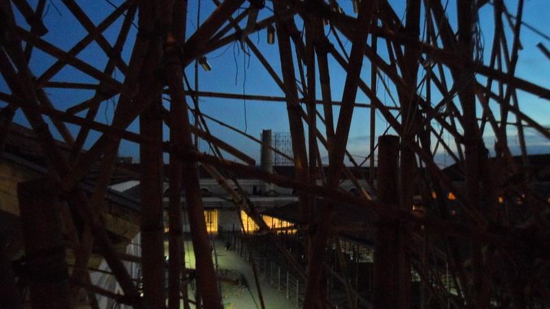 Bambusschatten
