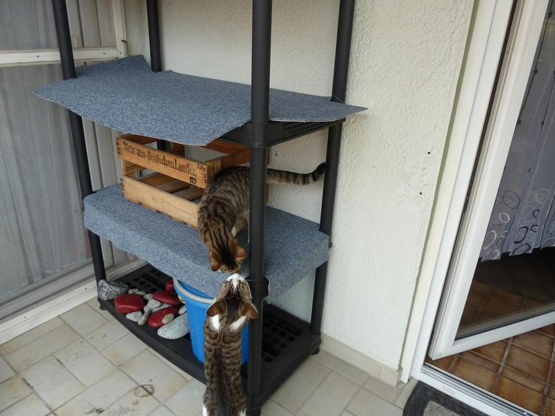 kratzbaum f r drau en spontan gebastelt katzen forum. Black Bedroom Furniture Sets. Home Design Ideas
