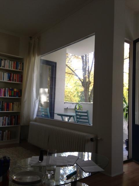 balkonsicherung katzennetz welche farbe katzen forum. Black Bedroom Furniture Sets. Home Design Ideas