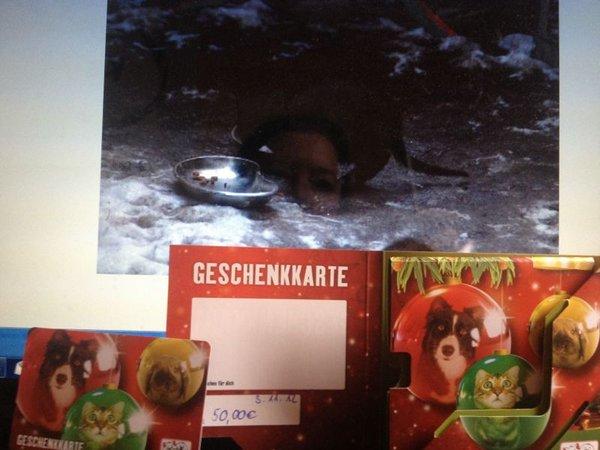 Geschenkkarte für Zoofachhandel