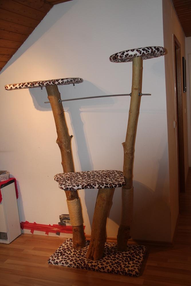 echtholz kratzbaum und catwalk basteln katzen forum. Black Bedroom Furniture Sets. Home Design Ideas