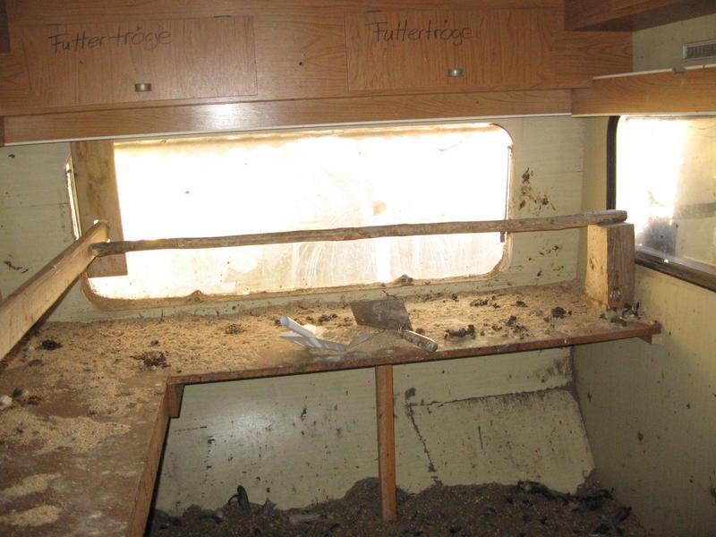 innenausbau vom wohnwagen zum h hnerstall seite 3. Black Bedroom Furniture Sets. Home Design Ideas
