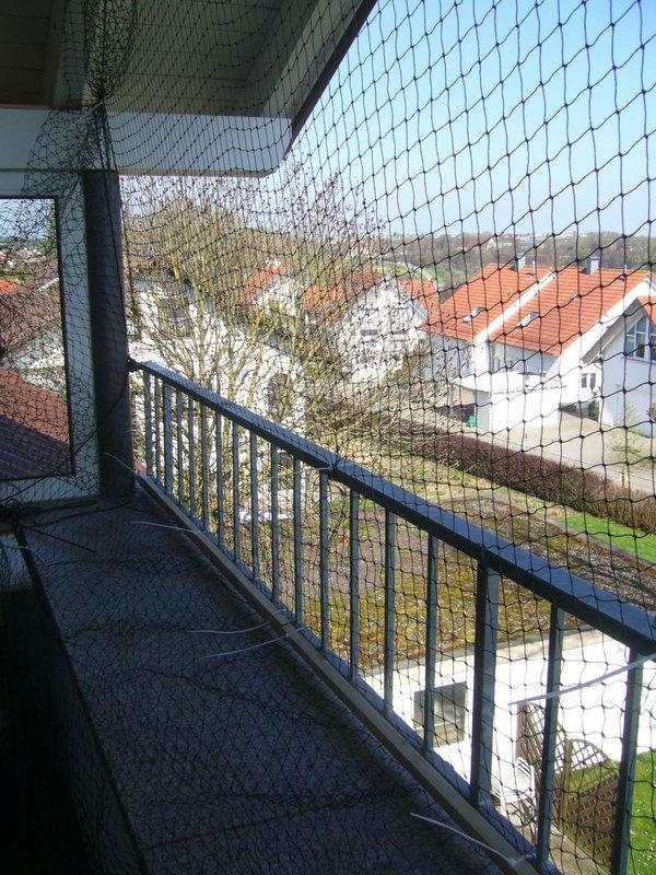 balkon sichern danke f r gute tipps seite 2 katzen forum. Black Bedroom Furniture Sets. Home Design Ideas