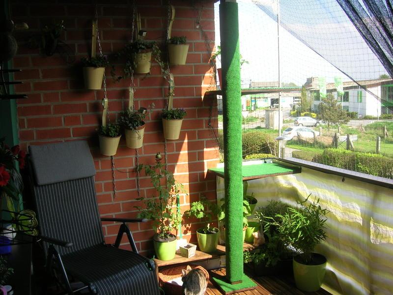 wetterfesten kratzbaum selber bauen ideen seite 2 katzen forum. Black Bedroom Furniture Sets. Home Design Ideas