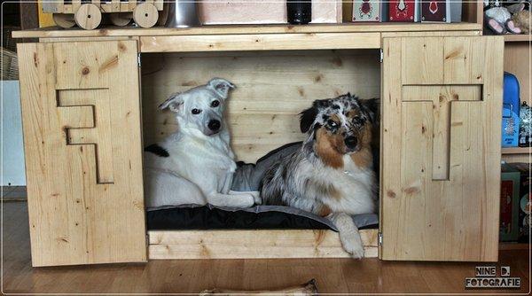 schlafbox australian shepherd. Black Bedroom Furniture Sets. Home Design Ideas
