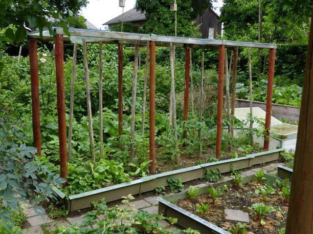 Eure gartenbilder beete gestaltungsideen traumsommer for Gartenbilder gestaltung
