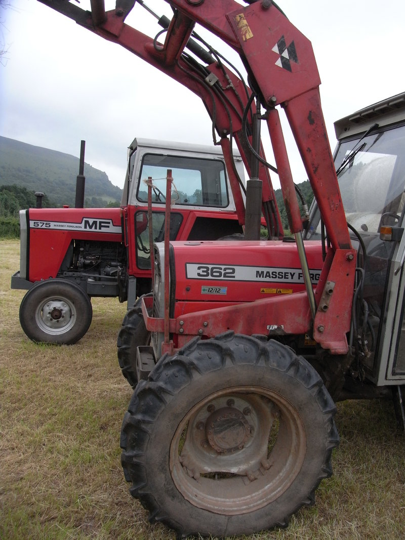 Massey Ferguson MF 575 for sale