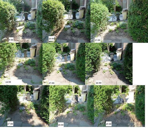 Schattiger vorgarten mit giersch problem page 2 mein for Gartengestaltung schattiger garten