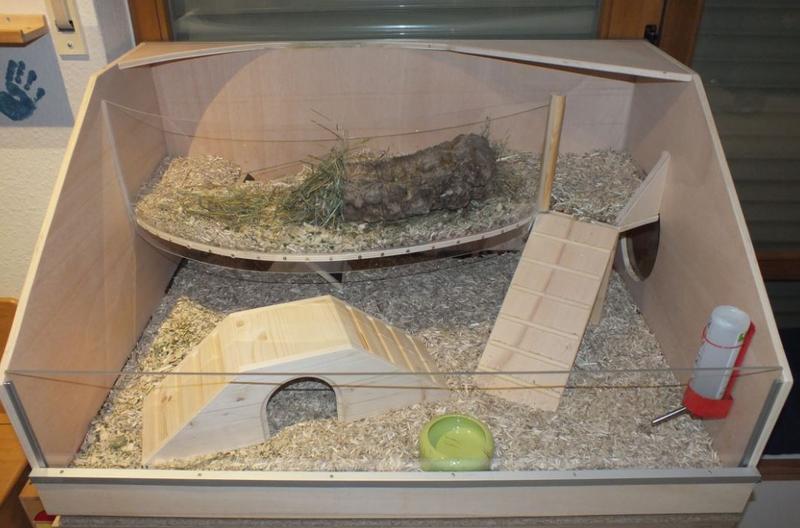 etagenk fig oder flacher k fig meerschweinchen haltung seite 2. Black Bedroom Furniture Sets. Home Design Ideas