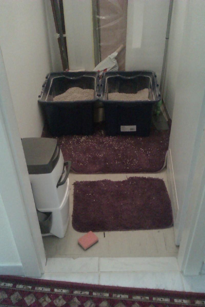 was f r katzenklo s habt ihr. Black Bedroom Furniture Sets. Home Design Ideas