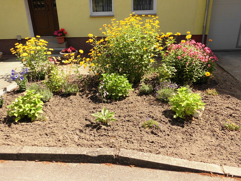 Vorgarten neu gestalten - aber wie? - Mein schöner Garten Forum