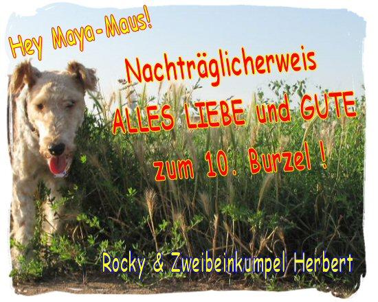 An den Beitrag angehängtes Bild: http://up.picr.de/15423149st.jpg