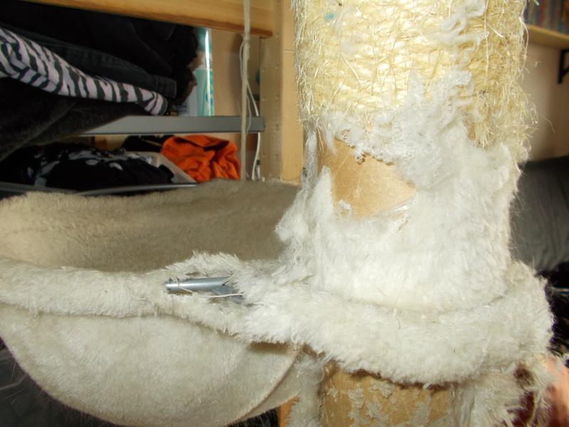 kratzbaum von ebay der wahnsinn seite 4 katzen forum. Black Bedroom Furniture Sets. Home Design Ideas