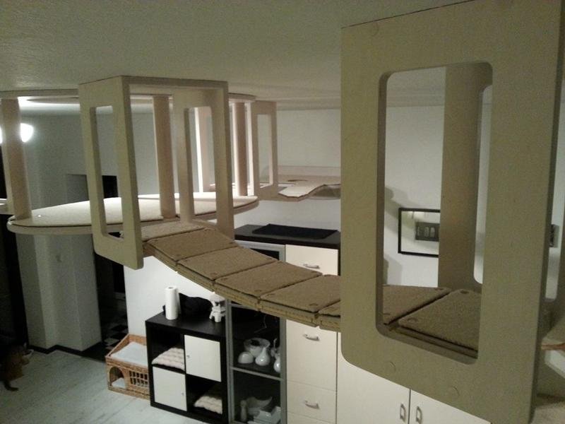 kratzm bel catwalks von goldtatze seite 4 katzen forum. Black Bedroom Furniture Sets. Home Design Ideas