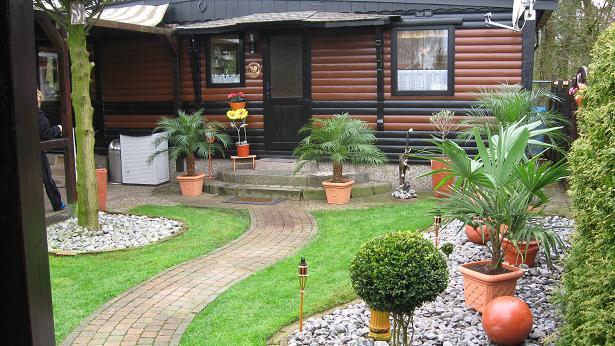 palme wohnzimmer uberwintern zimmerpflanzen pflege tipps. Black Bedroom Furniture Sets. Home Design Ideas