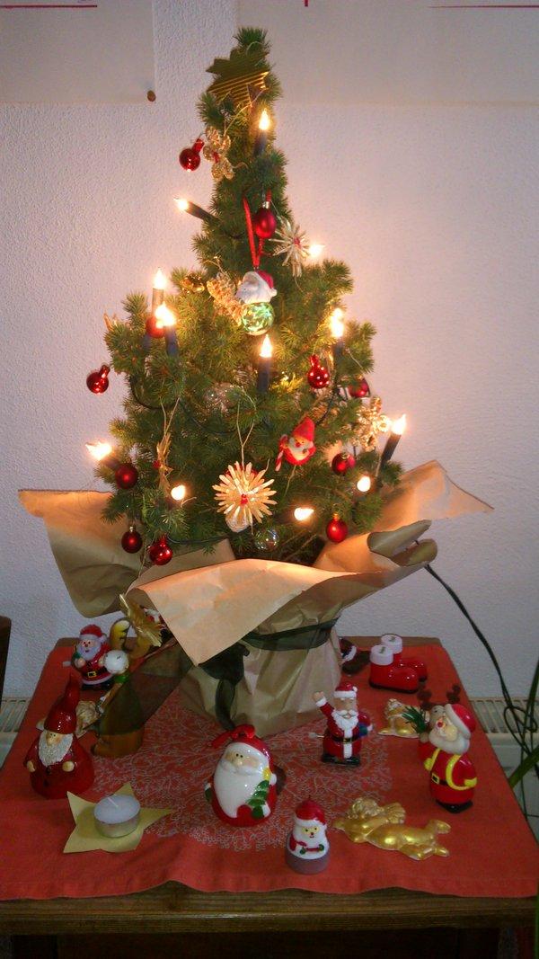 Weihnachtswünsche Für Einen Kranken.Was Wächst Bei Euch Im Zimmer Page 379 Mein Schöner Garten Forum