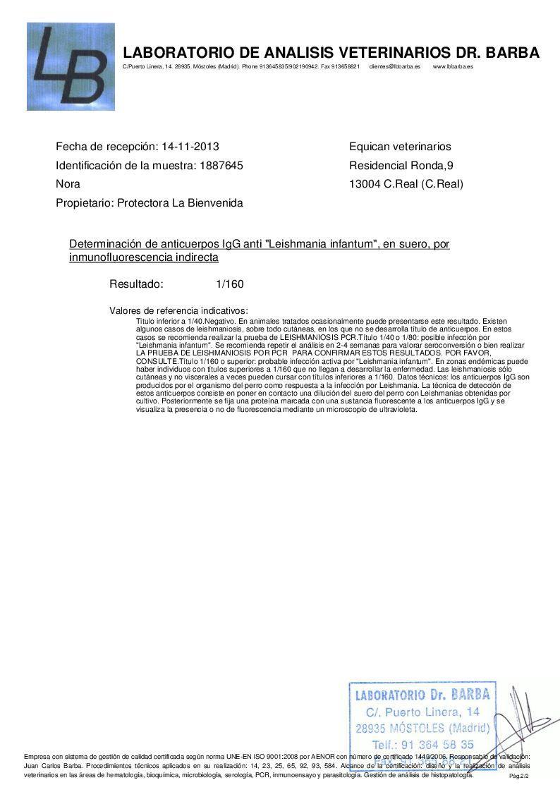 buy levitra super active+ online no prescription