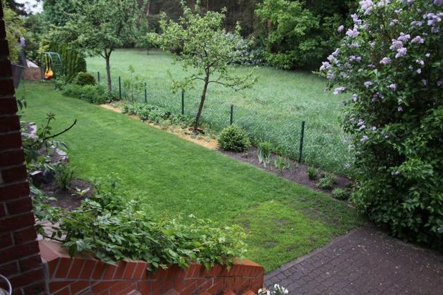 Neues grundst ck zum alten dazu gekauft tips f r for Gartengestaltung rosenbogen