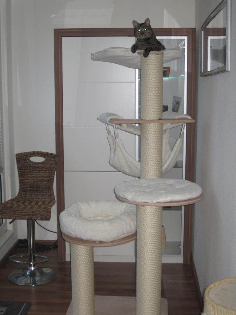 welchen kratzbaum habt ihr seite 3 katzen forum. Black Bedroom Furniture Sets. Home Design Ideas