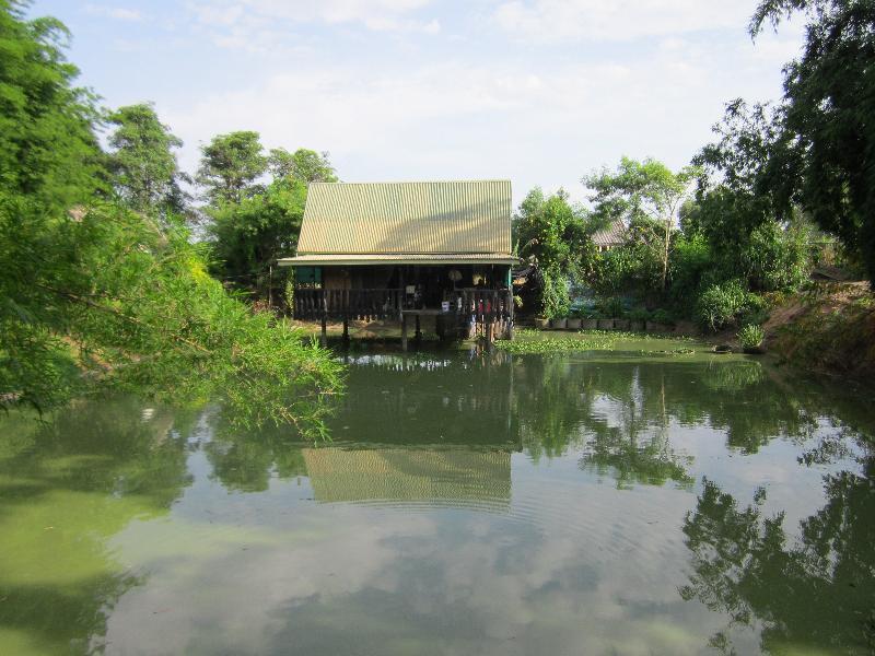 Fischzucht thailand forum for Was brauchen fische im teich