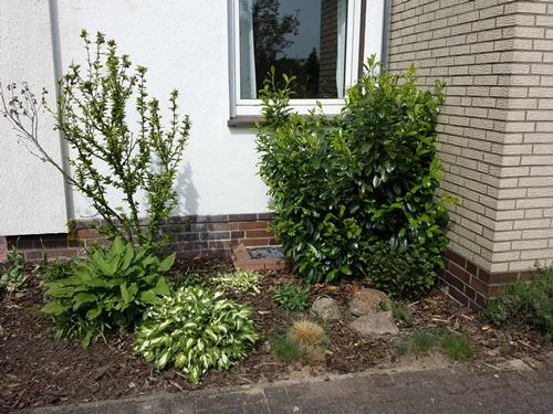 Vorgarten - Ecke an Hauswand - kreative Ideen gesucht! - Mein ...