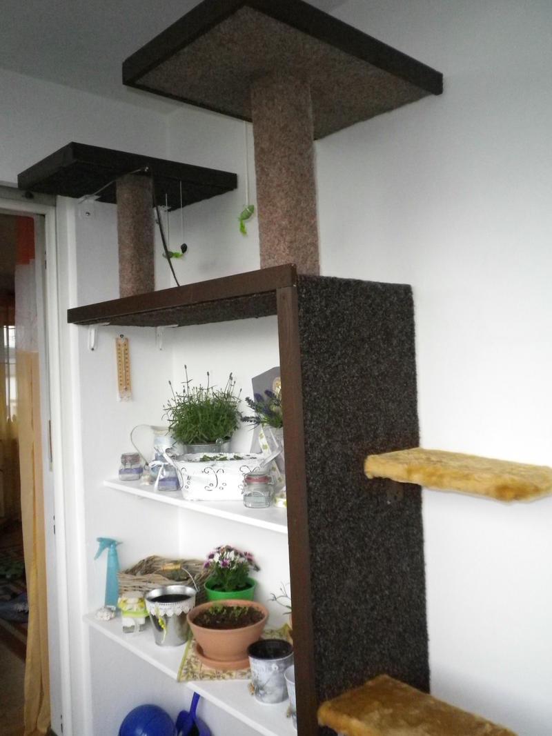 zeigt her eure eigenbau kratzm bel seite 76 katzen forum. Black Bedroom Furniture Sets. Home Design Ideas