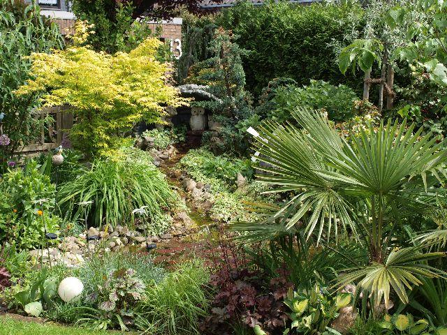 Einfassungspflanzen und Gestaltungsideen fu00fcr den Garten ...