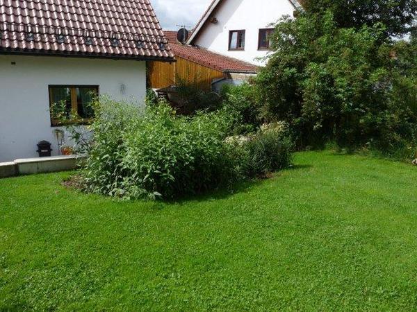 Aw:Ein Rosengarten entsteht - EDIT: Diese Blüten und der Duuuuft ...