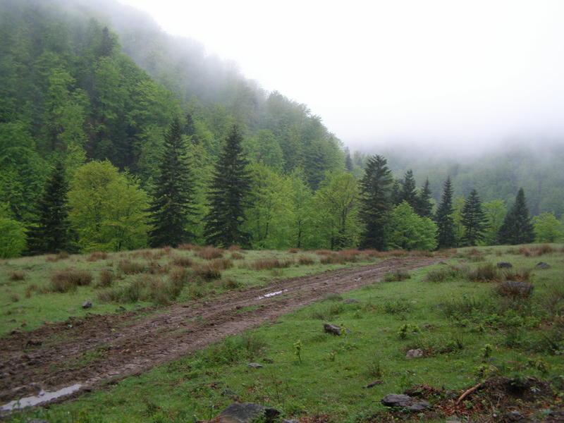 Karpat niva tour '14. Rumania 18321563ca