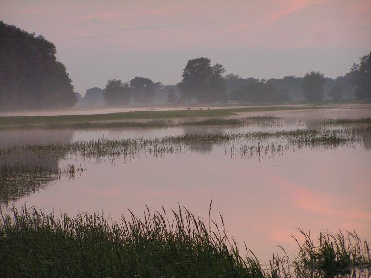 Bilder der Elbe 18339455fn